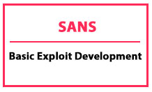 دوره basic exploit development